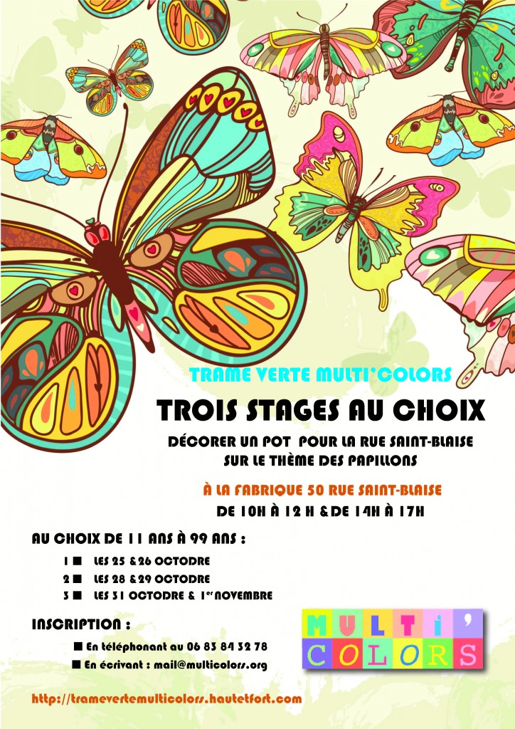 STAGE PAPILLONS