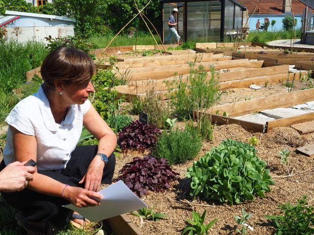 Un jardin de bien-être sur le toit
